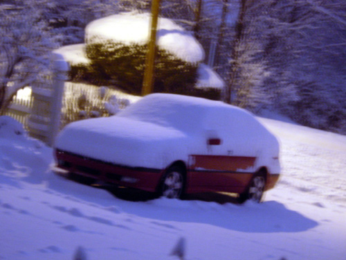 Saabs in snow